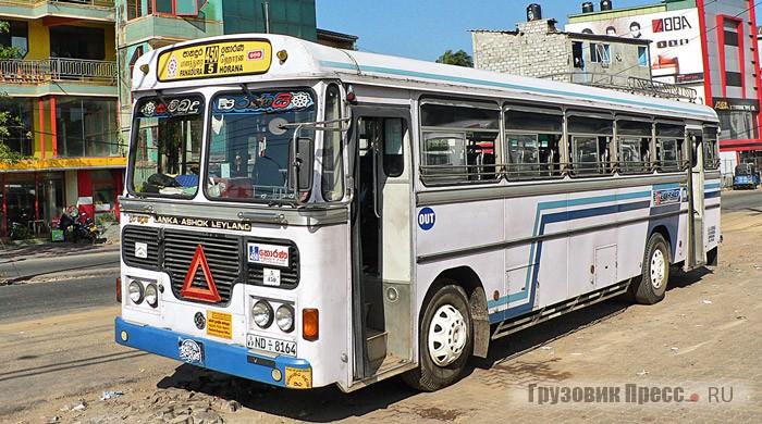 Популяция Lanka Ashok Leyland Viking наиболее многочисленная среди автобусов на Шри-Ланке